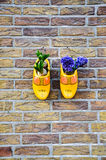 Yellow clogs as flowerpot on brick wall Royalty Free Stock Photography