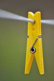 Yellow clothespin hang on a cord Royalty Free Stock Photo