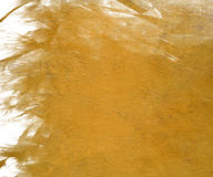 Yellow cloudy gloss paint background Stock Images