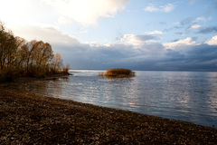 Yellow coast. The coast of the lake is carpeted from yellow leaves in the fall Royalty Free Stock Photography