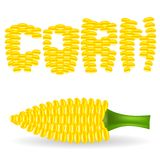 Yellow Cob Corn Stock Images