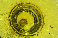 Yellow Cocktail. In a wet glass close up stock photo