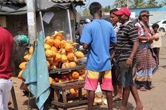 Yellow coconut seller Royalty Free Stock Images