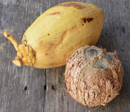 Yellow Coconuts. Yellow Coconut on white blackgrourd Stock Photography