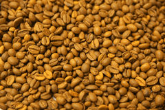 Yellow coffee beans background. Royalty Free Stock Photography