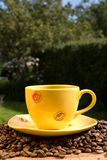 Yellow coffee cup Royalty Free Stock Photos