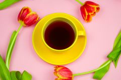 Yellow coffee cup and red tulips layout on pastel pink background. Top view stock image