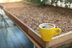 Yellow coffee mug with honey process coffee background. Yellow coffee mug with honey process coffee blurred background Royalty Free Stock Photos