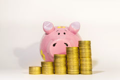 Yellow coins with piggy-bank Royalty Free Stock Image