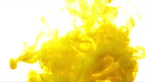 Yellow color paint ink drops in water slow motion full hd video white background with copy space. Inky cloud swirling flowing underwater. Abstract isolated stock video