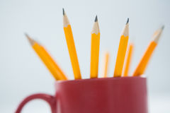 Yellow color pencils kept in mug on white background Stock Images