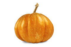 Yellow color pumpkin on a white background Stock Photography
