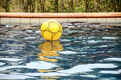 Yellow colorful beach ball floating in a pool Stock Photos