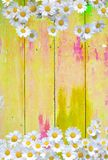 Green door with spots. Yellow colorful vintage background with daisy flowers in shabby distressed grungy texture hippie style Royalty Free Stock Photography