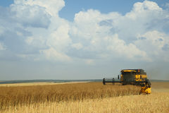 Yellow combine harvester on blue sky. Agricultural scene Royalty Free Stock Photos