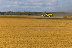Yellow combine harvester on a wheat field with blue sky Royalty Free Stock Images