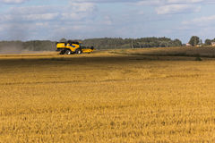 Yellow combine harvester on a wheat field with blue sky Stock Photography
