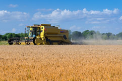 Yellow combine harvester at work Royalty Free Stock Images