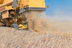 Yellow combine harvester Stock Photos