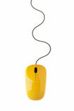 Yellow computer mouse Royalty Free Stock Image