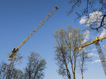 Yellow construction cranes and green trees against blue sky. Royalty Free Stock Images