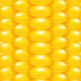 Yellow Corn Background Royalty Free Stock Images