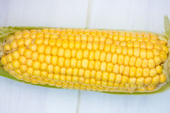 Yellow Corn Cob Closeup on White Background, Top View, Macro Stock Images