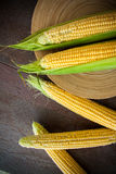 Yellow corn cobs in a bowl Royalty Free Stock Photo