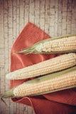 Yellow corn cobs Royalty Free Stock Image