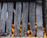 Yellow corn cobs in old granary house. Spain Royalty Free Stock Image