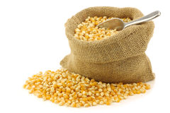 Yellow corn grain in a burlap bag Royalty Free Stock Photos
