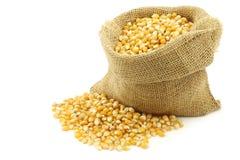 Yellow corn grain in a burlap bag Royalty Free Stock Photos