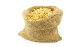 Yellow corn grain in a burlap bag Stock Photos