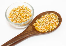 Yellow corn grain and spoon   white background Stock Photography