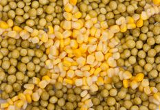 Yellow corn and green beans Royalty Free Stock Photos