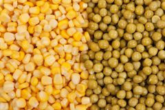 Yellow corn and green beans Royalty Free Stock Photography