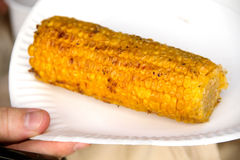 Yellow corn. Corn yellow, grilled on a white paper plate, tasty, vegetable, the most ancient bread plant in the world Royalty Free Stock Photography
