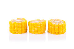 Yellow corn isolated on the white Stock Images