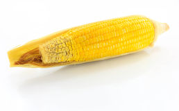 Yellow corn. That is placed on a white background Royalty Free Stock Photography