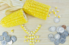 Yellow corn ready to eat on wood with japan yen sign and money c. The corns and coins with YEN currency sign Stock Photos