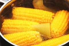 Yellow corn stew in a saucepan. Flavored dinner royalty free stock image