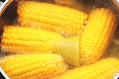 Yellow corn stew in a saucepan. Flavored dinner royalty free stock photography