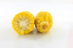 Yellow corn. Two yellow corn that is placed on a white background Royalty Free Stock Image