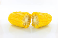 Yellow corn. Two yellow corn that is placed on a white background Royalty Free Stock Images
