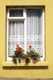 Yellow cottage window with flowers on sill, Eyeries Village, West Cork, Ireland Stock Images