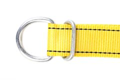 Yellow cotton belt. Stock Image