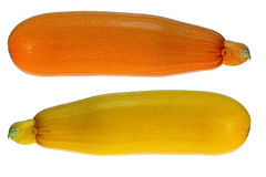 Yellow courgettes Stock Images