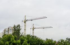 Yellow crane are building, behing the trees, near houses, nature is dying stock image