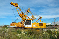 Yellow cranes Royalty Free Stock Photo
