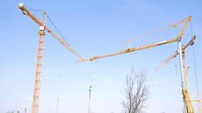 Yellow cranes against the blue sky stock footage